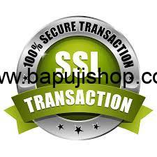 SSL Secure Badge